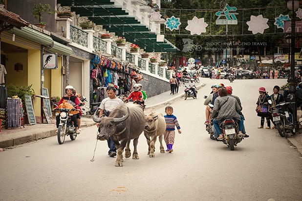 Sapa town is walkable
